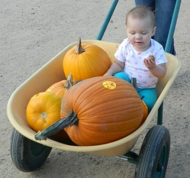 Zoey - Pumpkin patch 2014-3