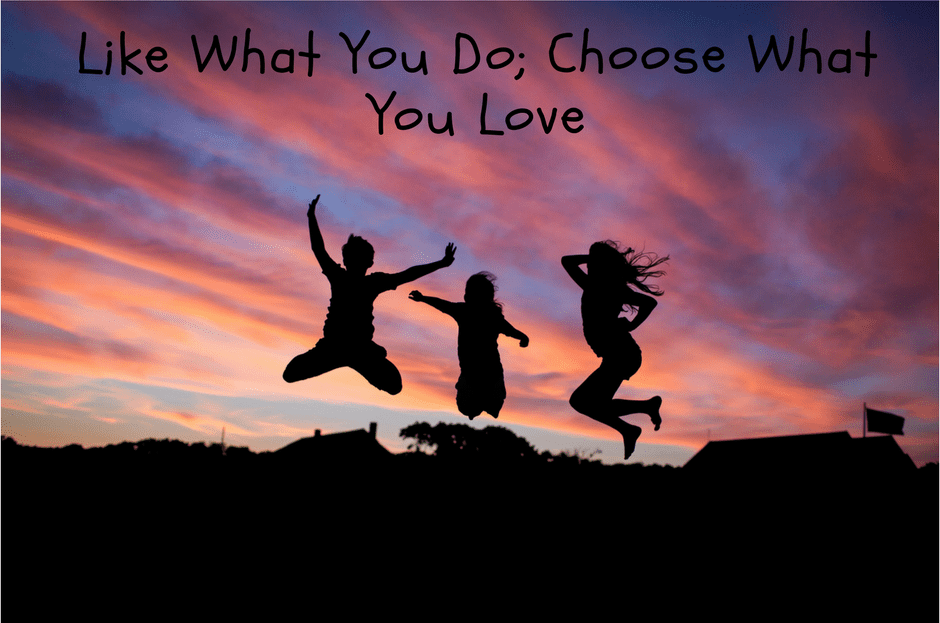 Like What You Do; Choose What You Love