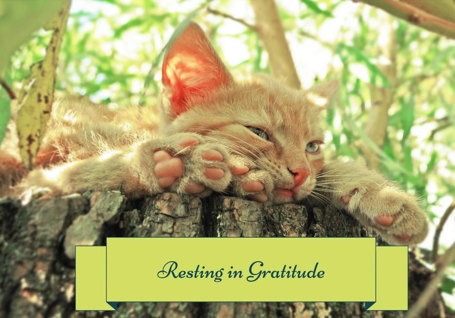 Resting in Gratitude