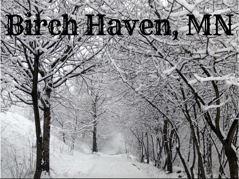 Birch Haven, MN